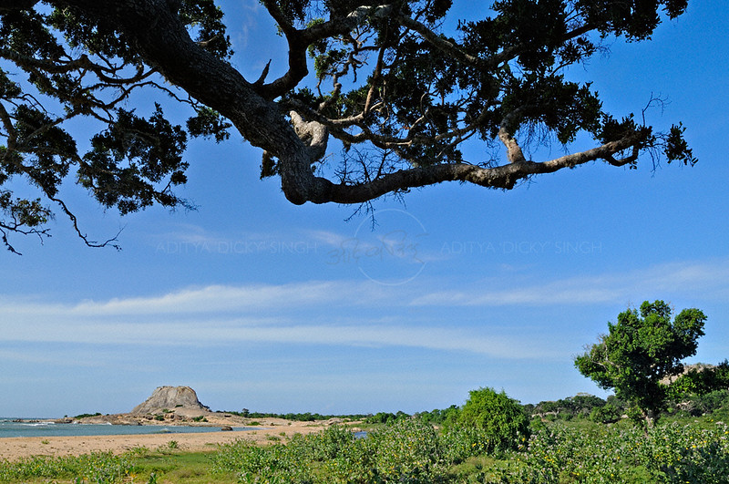 The sea coast of the Yala national park in  Sri Lanka