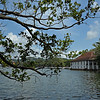 Kandy lake near the Sri Dalada Maligawa or temple of the tooth relic in Kandy, Sri Lanka