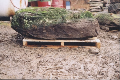 Pensylvania LM fieldstone boulder  *Easily accessible.  This stone is not typically carried in stock but can be added to a truck or picked up by TDH