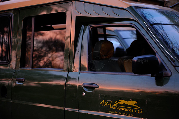 Sunworld Safari, Bagh, africa