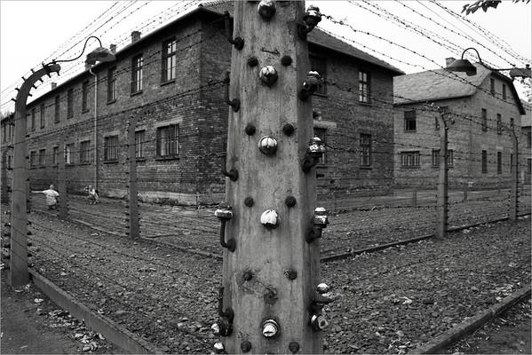 Auschwitz: souvenir photo
