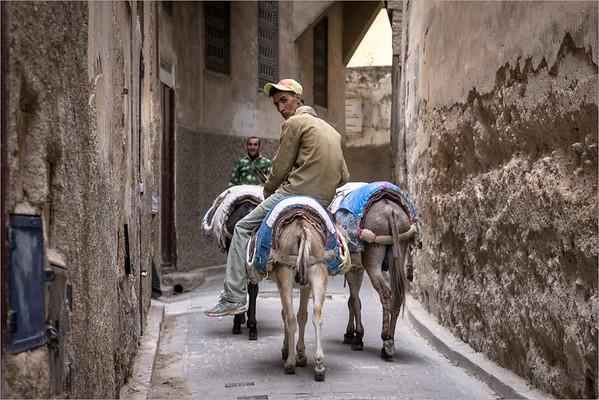 the medina of Fez