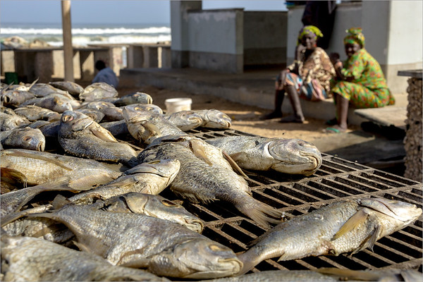 Lampoul sur Mer - drying fish