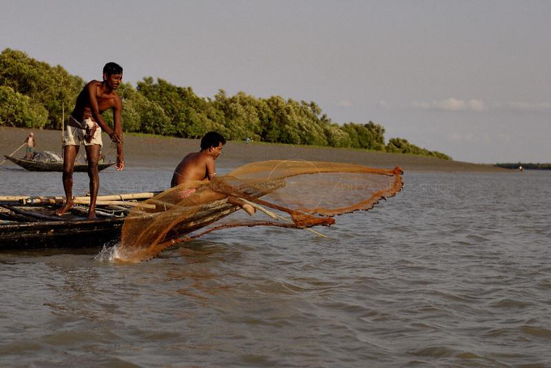 Fishermen in rural Bengal (Sundarbans) casting a net
