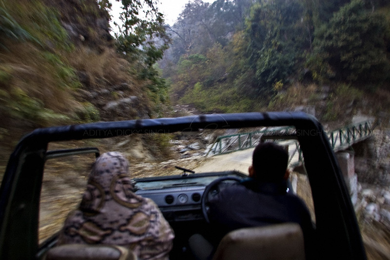 Rally driving in a forest road in North India