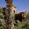 A palm tree in front of a ruined palace in rural Rajasthan