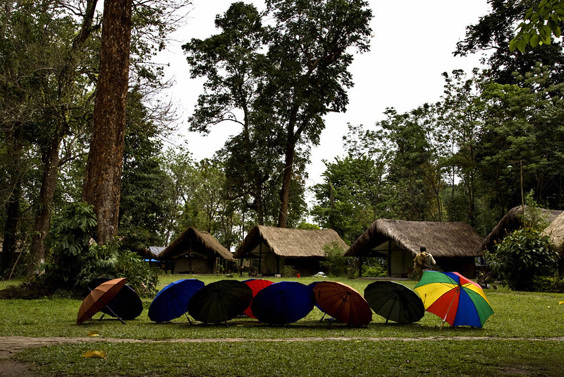 Eco camp at Nameri tiger reserve in Assam