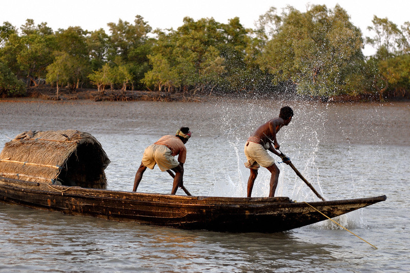 Fishermen in rural Bengal (Sundarbans)