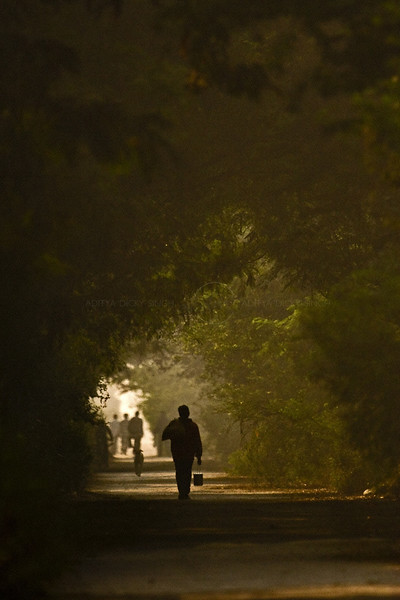 Silhouette of people in the morning in a garden in Delhi