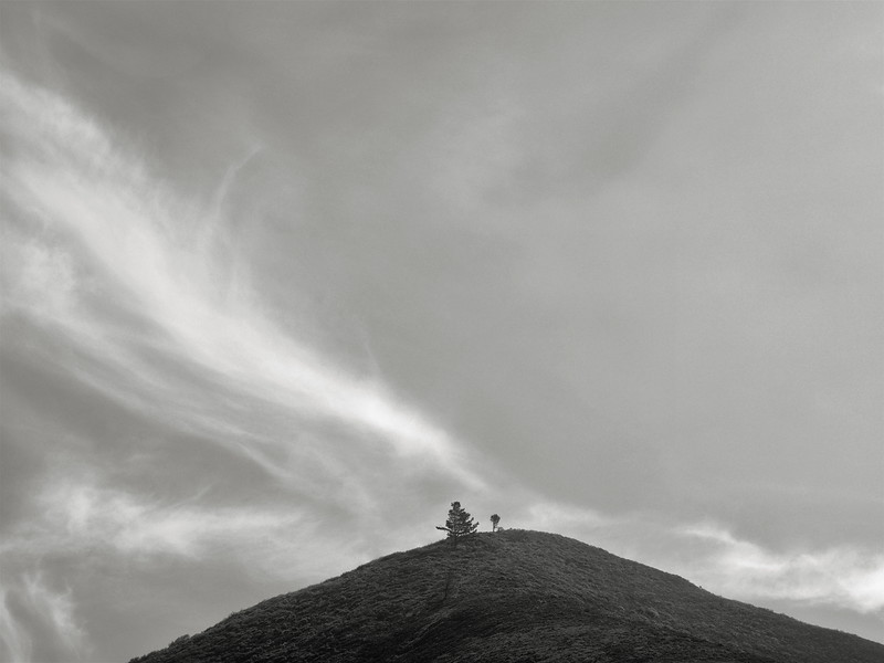 Two Trees on a Distant Peak