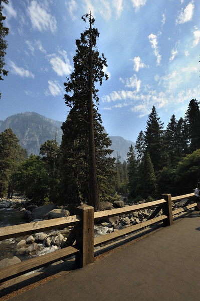 A bridge over a stream in Yosemite national park, California, USA