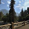 A bridge over a stream in Yosemite national park, California, USA