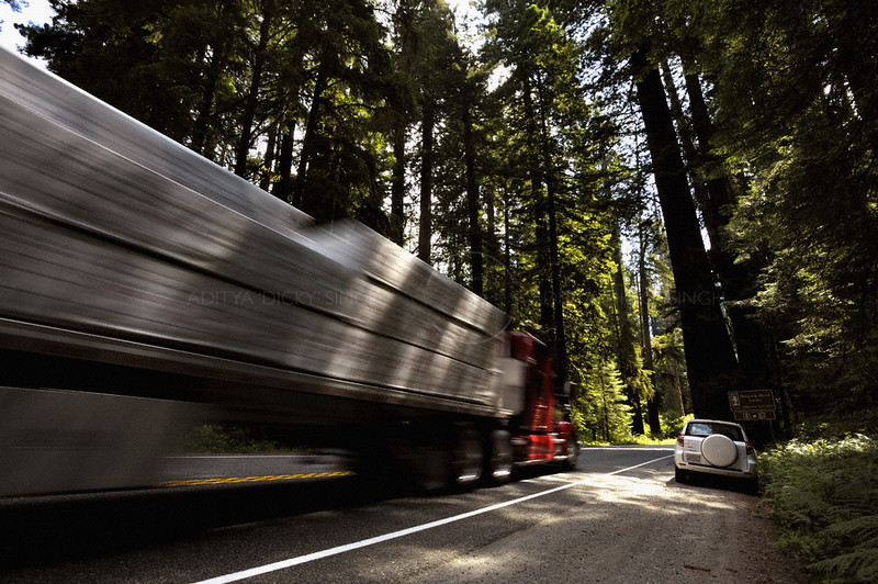 Truck overtaking a parked car in the coastal Redwood forests of north California, USA