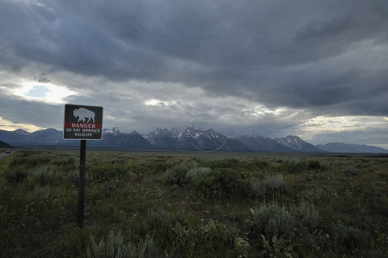 """Do not approach wildlife"" signage in the Grand Teton national park, Wyoming, USA"
