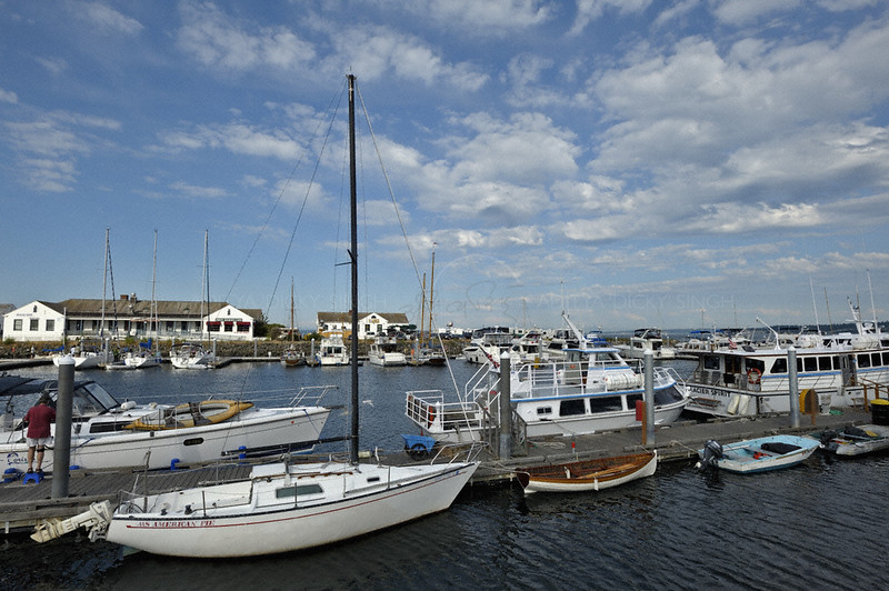 A marina in the summers in Port Townsend in Washington state, USA