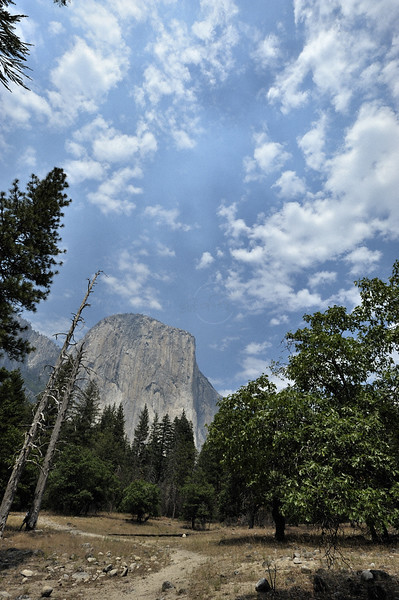 Yosemite national park, California in the summers