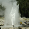 Beehive geyser in action in yellowstone national park, Wyoming, USA