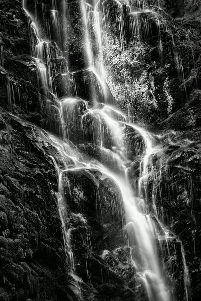 Berry Creek Falls - Plate 2