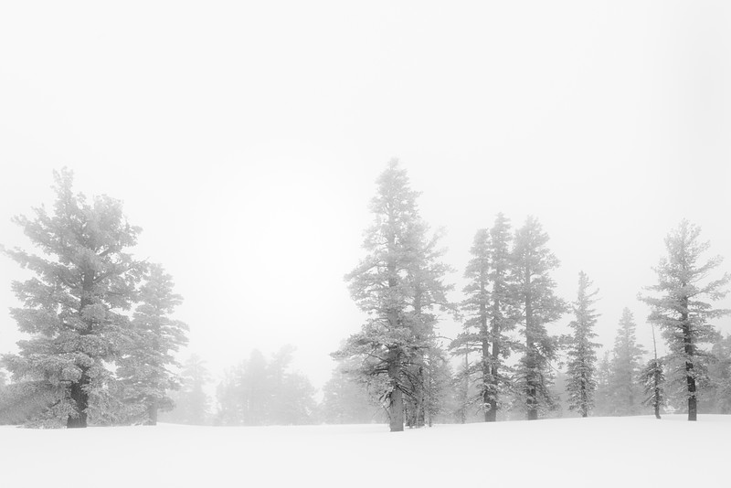 Winter Haze