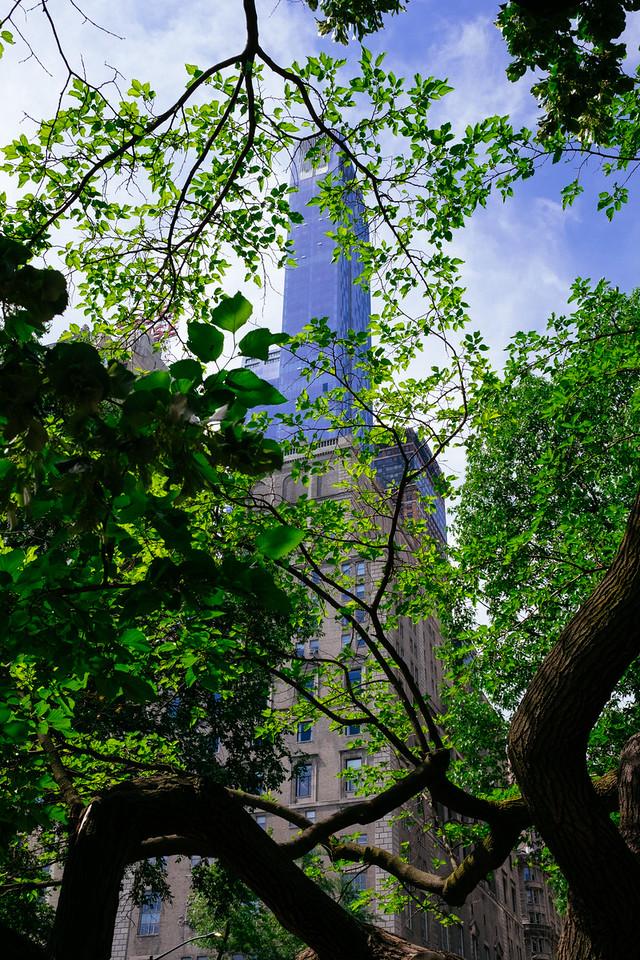 New York City IV