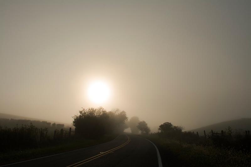 Fog in Thompson Valley