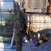 (9 of 10) Solar Stock Tank In Use By Long John Billy