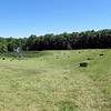 All Baled Both Pastures.