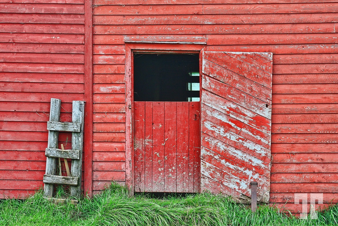 gros-morne-trout-river-barn-2-X2.jpg