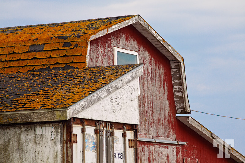 Acadian fishing shack at Cape Sable Island, Nova Scotia  (ZZ)