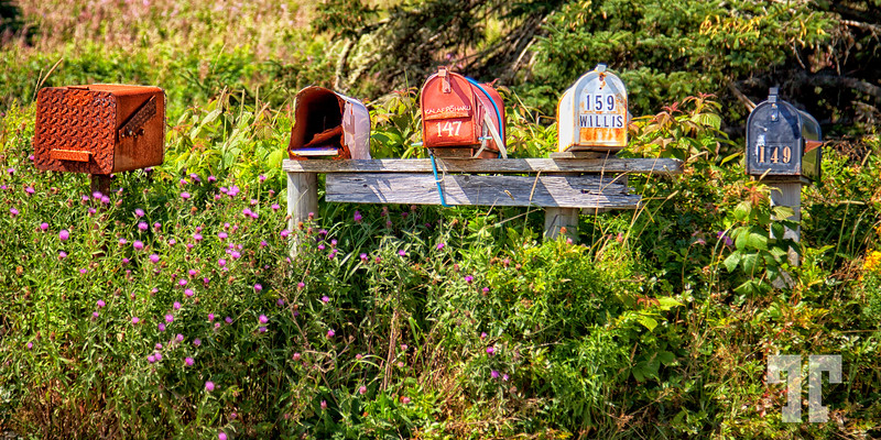 Mailboxes  This one is from the month of August in Nova Scotia, processed this morning.  Have a great Sunday everybody :)