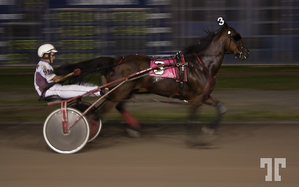 Harness Race - Inverness (zz)