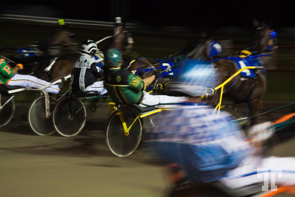 Harness Race - Inverness