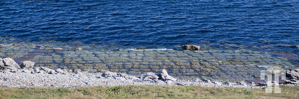 The Point Amour Patch Reefs, Labrador, Canada  The mound-like formations present along this shore are composed of the calcite skeletons of an extinct group of sponge-like animals called Archaeocyathids (arc-ae-o-sy-athids).  The Point Amour Archaeocyathid reefs, which were formed about 530 million years ago, provide evidence that this region was once a warm sea near equator. The Point Amour Lighthouse, Labrador, Canada