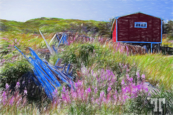 red-shack-Quirpon-colored-pencil