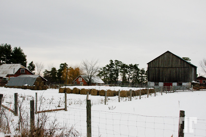- Ontario Pictures