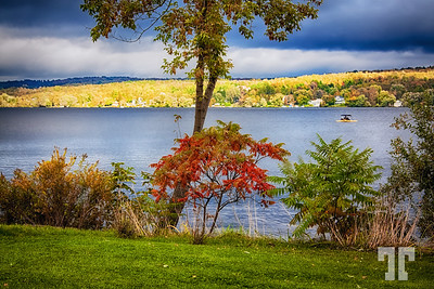 Sunbreak in a rainy day of late September  - Posted Oct. 5, 2013  Thank you so much for all the comments yesteday - I couldn't reciprocate because of some internet failure, sorry.  (ZZ)