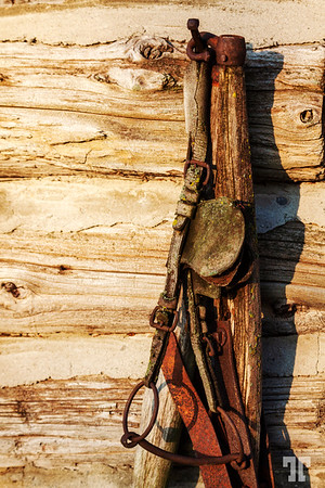 country-tools-rusted-morning-light