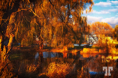 firery-country-pond reflections-ontario-canada