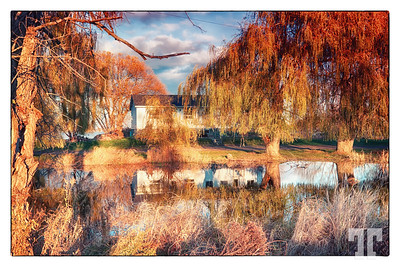 country-house-pond-reflection-ontario-framed