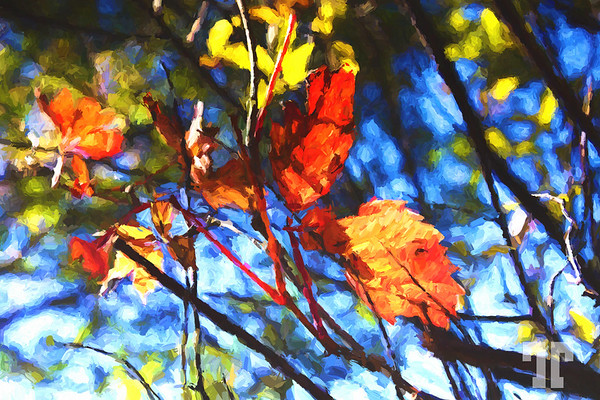 red-leaves-OIL-PAINTING