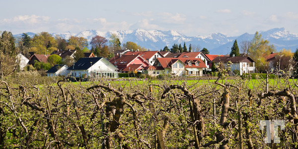 Spring on Bodensee, Lake Constance, Germany
