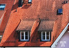 Fire Orange shingles in Friedrichshafen, Germany
