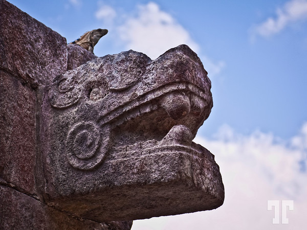 Jaguar and  Iguana - at Chichen Itza the Mexican Mayan site  (ZZ)