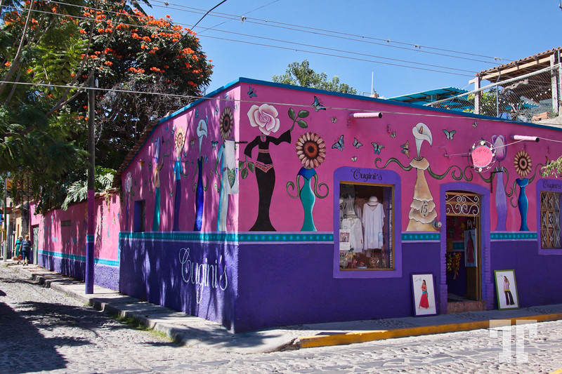 ajijic-mexico-decorated-pink-wall-4