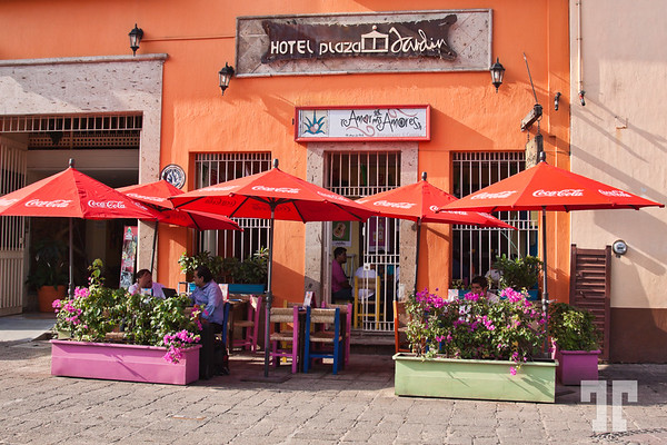 cafe-central-plaza-tequila-mexico