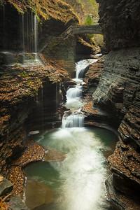 Watkins Glen State Park, N.Y.