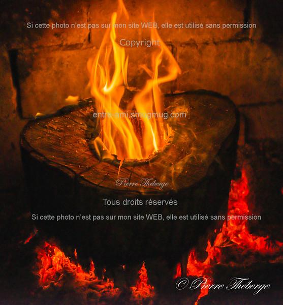 2014-11-07_009-Pierre