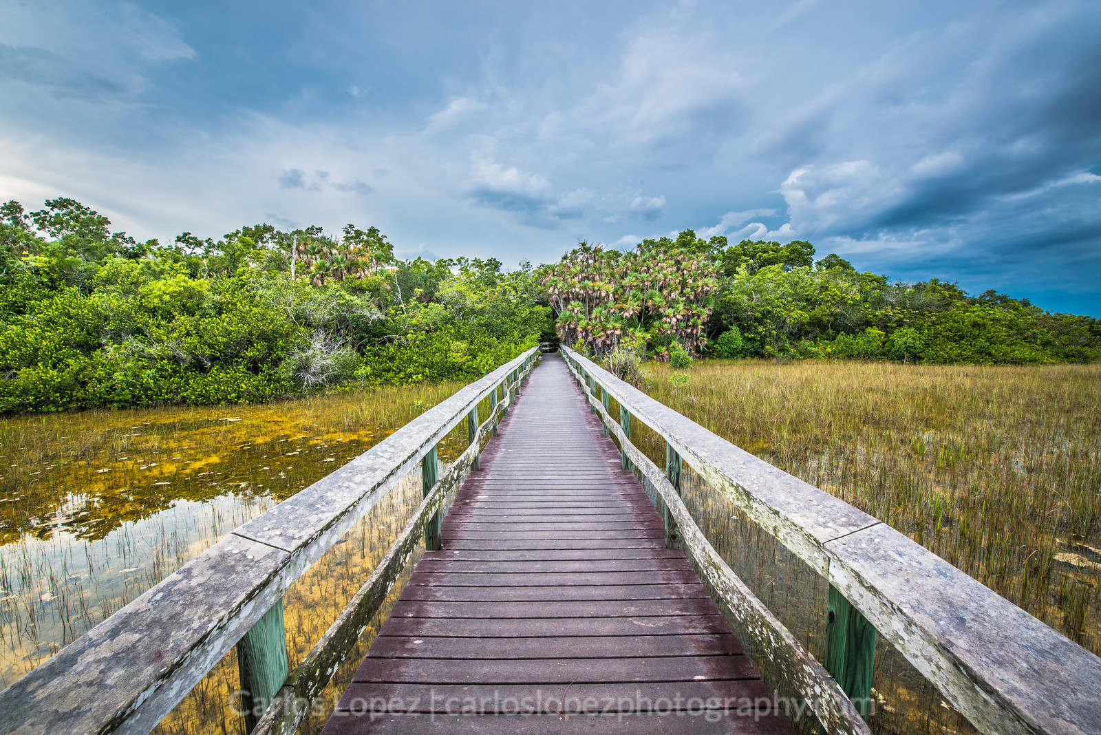 Everglades National Park #2