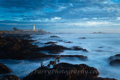 Outer Reef Pigeon Point