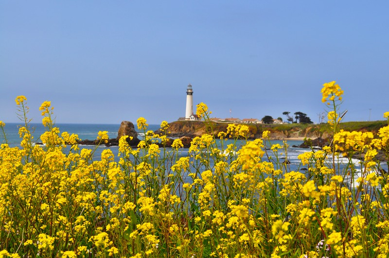 Springtime at the Point